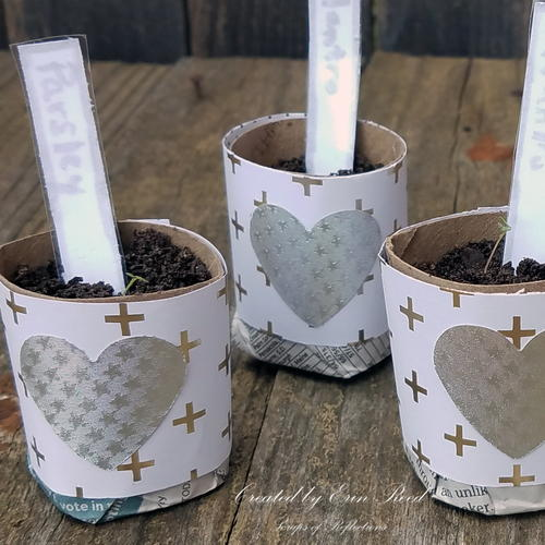 Decorative Seed Starter Gifts with Laminated Plant Markers