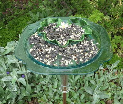 DIY Recycled Dish Bird Feeder