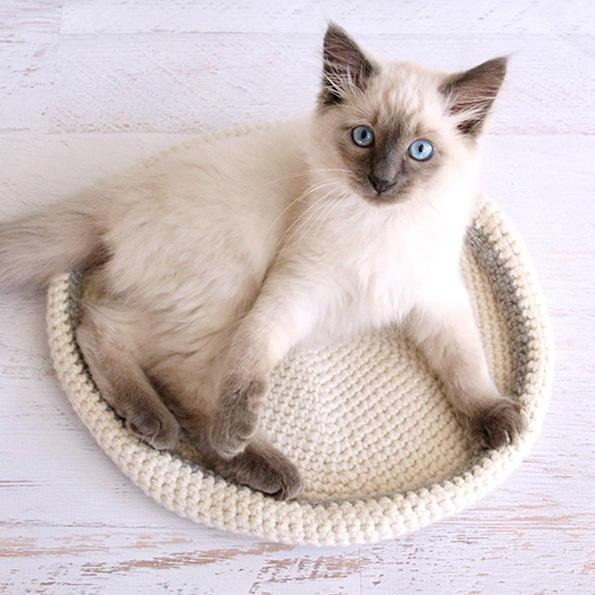 "DIY Crochet Cat Nest ""Muffin Oven"" Pattern by Eilen Tein on ... | 595x595"