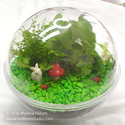 Woodland Themed Terrarium