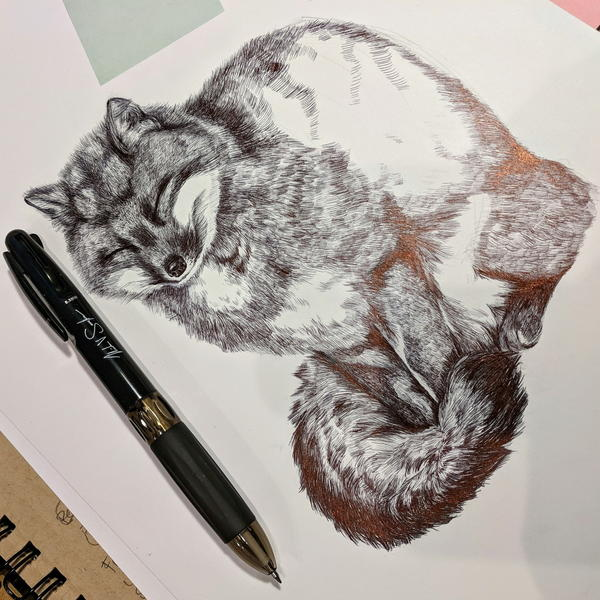Best Ballpoint Pens for Drawing