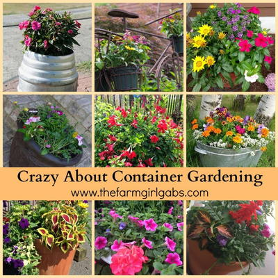 Crazy About Container Gardening