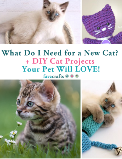 What Do I Need for a New Cat  6 DIY Cat Projects