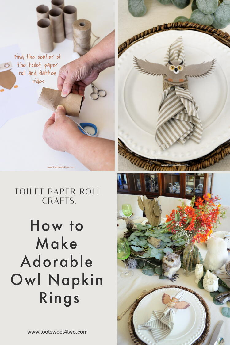 Toilet Paper Roll Crafts How To Make Adorable Owl Napkin Rings Allfreediyweddings Com