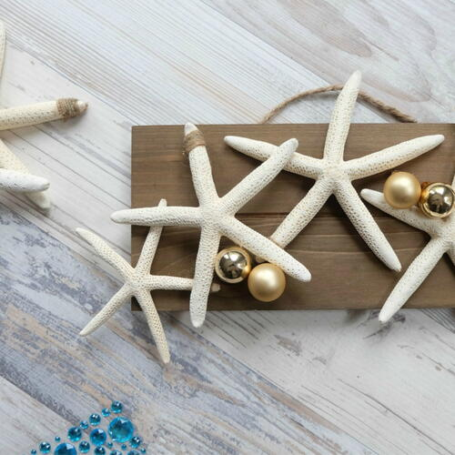 2 Step Diy Coastal Christmas Starfish