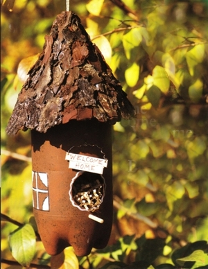 Plastic Bottle Birdfeeder