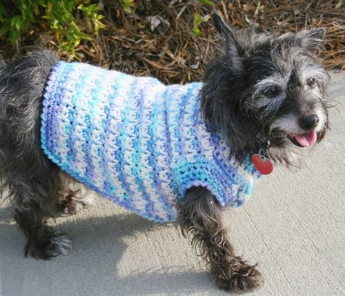 Dog Sweater Crochet Pattern
