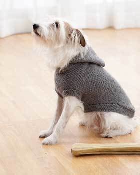 Knitting Pattern For Staffie Dog Coat : Dog Hooded Coat FaveCrafts.com