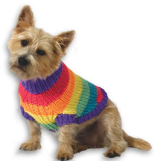 Rainbow Dog Sweater Knitting Pattern from Caron Yarn ...