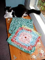 Jennifer's Crochet Pet Rug
