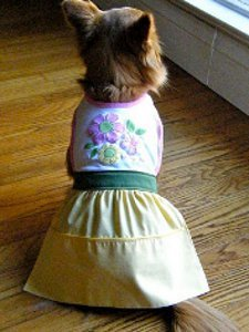 Fun Doggy Bib Dress