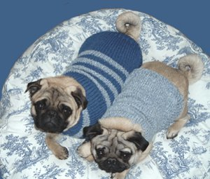 Cable Knit Greyhound Sweater