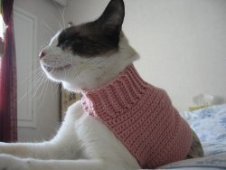 Mock Turtleneck Sweater for Cats