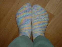 Small Shell Socks