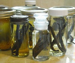 Arlenes Homemade Vanilla Extract