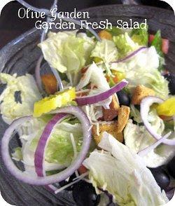 Copycat Olive Garden Garden Fresh Salad