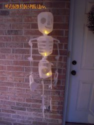 Light Up Jug Skeleton