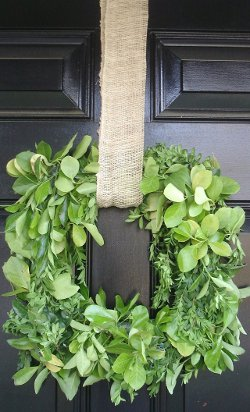 Boxwood Leaf Wreath