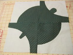 Turtle's Path Quilt Block