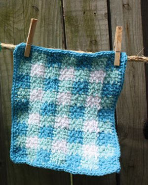 Aunt Bee's Gingham Dishcloth