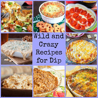 Easy Party Food: Wild and Crazy Recipes for Dip