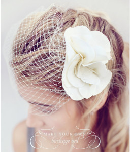 Beautiful Basic Birdcage Veil