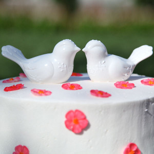 Peace and Harmony Lovebirds Cake Topper