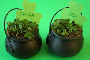 Pot of Clover Place Cards