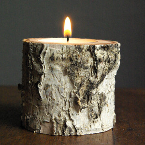 Beautiful Birch DIY Candle Holders