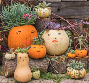 Make Your Own Pumpkin Family
