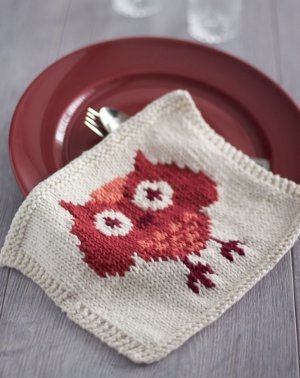 Festive Owl Dishcloth