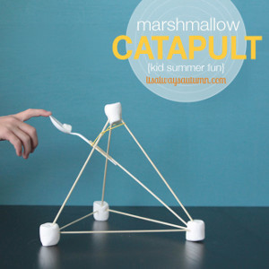 Fun Marshmallow Catapult