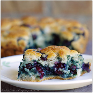 Blueberry Morning Biscuits
