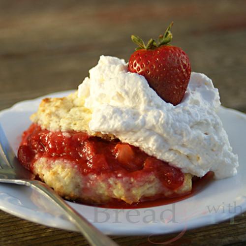 Old Fashioned Strawberry Shortcake Thebestdessertrecipes Com