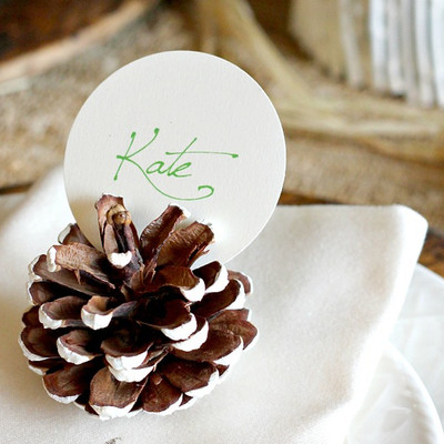 Pretty Easy Pine cone Place Card Holders IMR