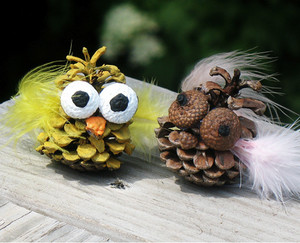Silly Owl Pine Cone Craft