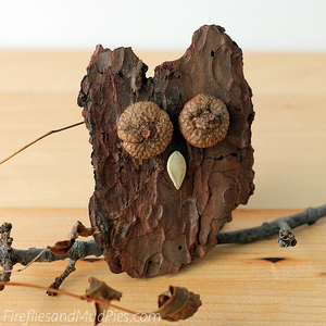 Bark Owls Nature Craft