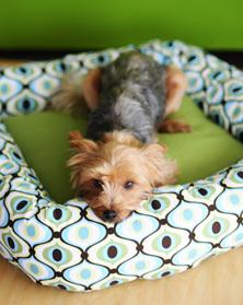 2 Hour DIY Dog Bed   AllFreeSewing.com