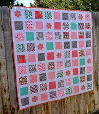 20 Applique Quilts: Fast and Easy Quilt Patterns