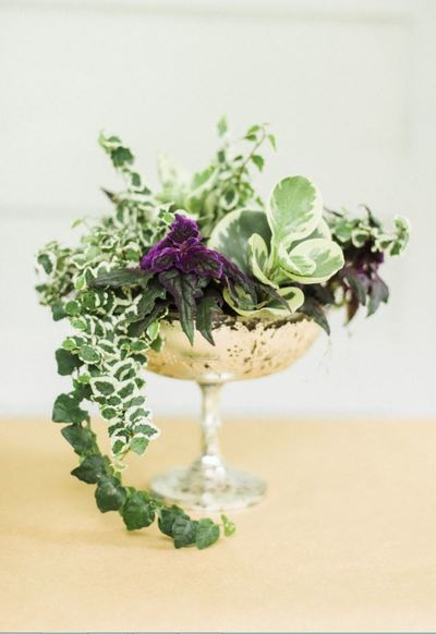 Untamed Garden DIY Centerpiece