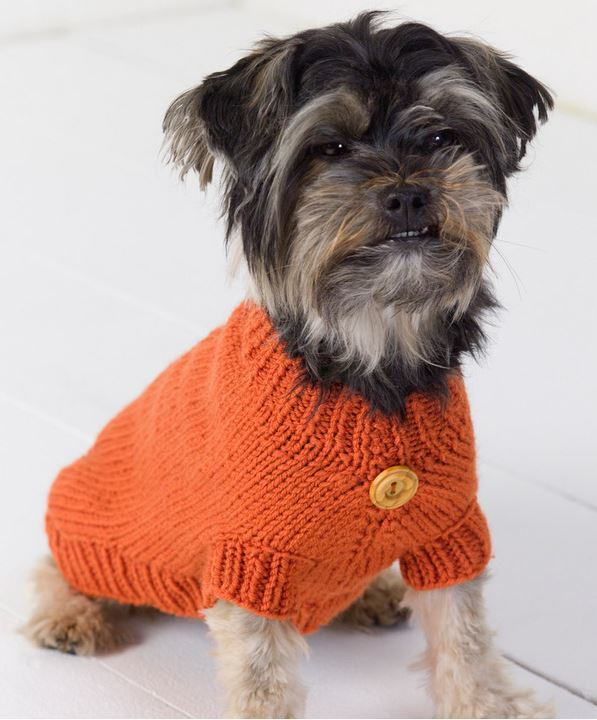 Knitting Pattern Large Dog Sweater : Life is Ruff Knit Dog Sweater AllFreeKnitting.com