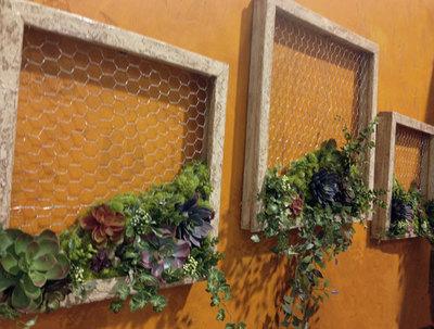 Succulent Wall Art succulent garden diy wall decor | favecrafts