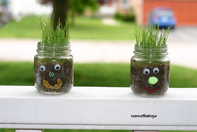Mini Mason Jar Grass Heads