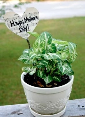 Musical Mother's Day Plant Flag