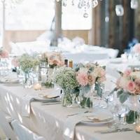 Pretty Pastel Orchard Wedding Decor