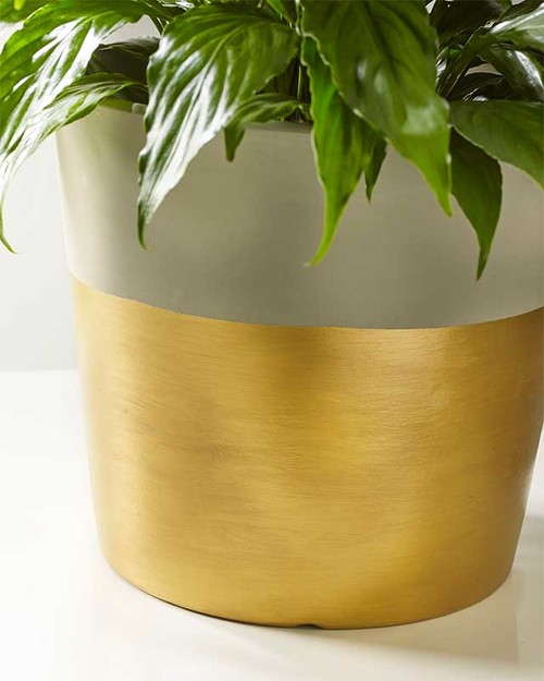 Dipped in Gold Planter
