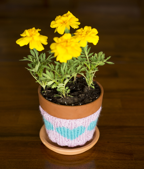 Heart Flower Pot Cozy