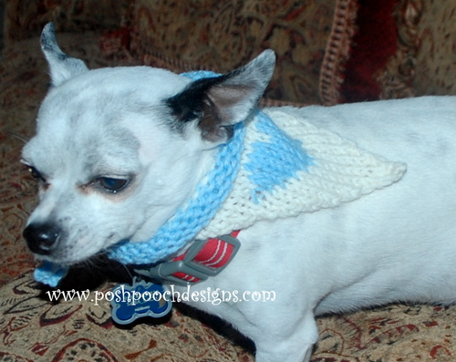 How To Knit a Heart Dog Bandana_1