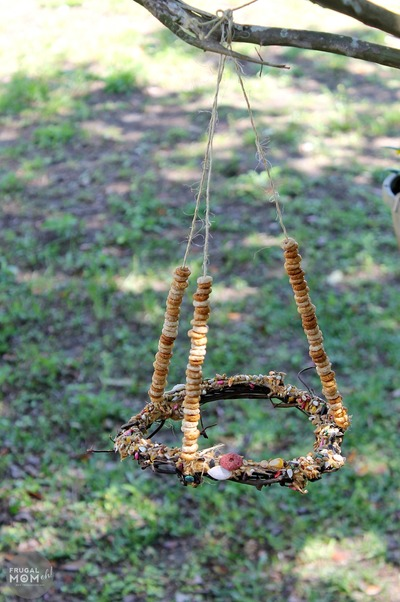 DIY Bird Feeder Buffet