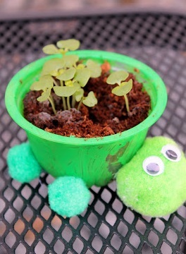 Kid Made Turtle Herb Planters